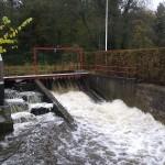Høj vandstand 2010