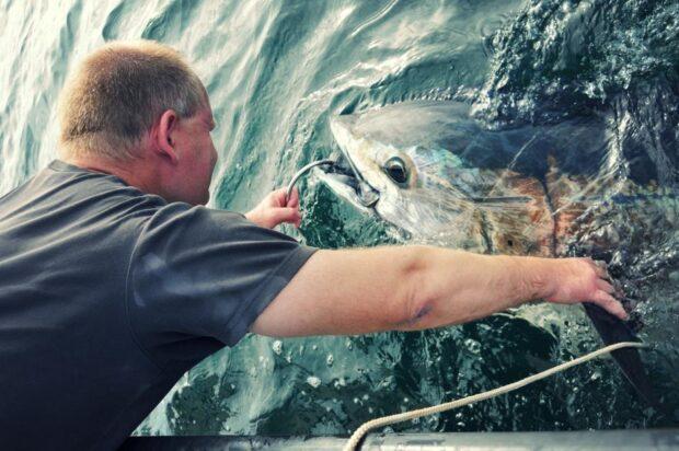 Foredrag om tunfiskeri