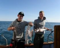 Årets fiskebillede 2008